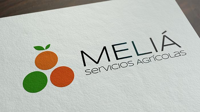Presentamos nuevo logotipo e imagen renovada
