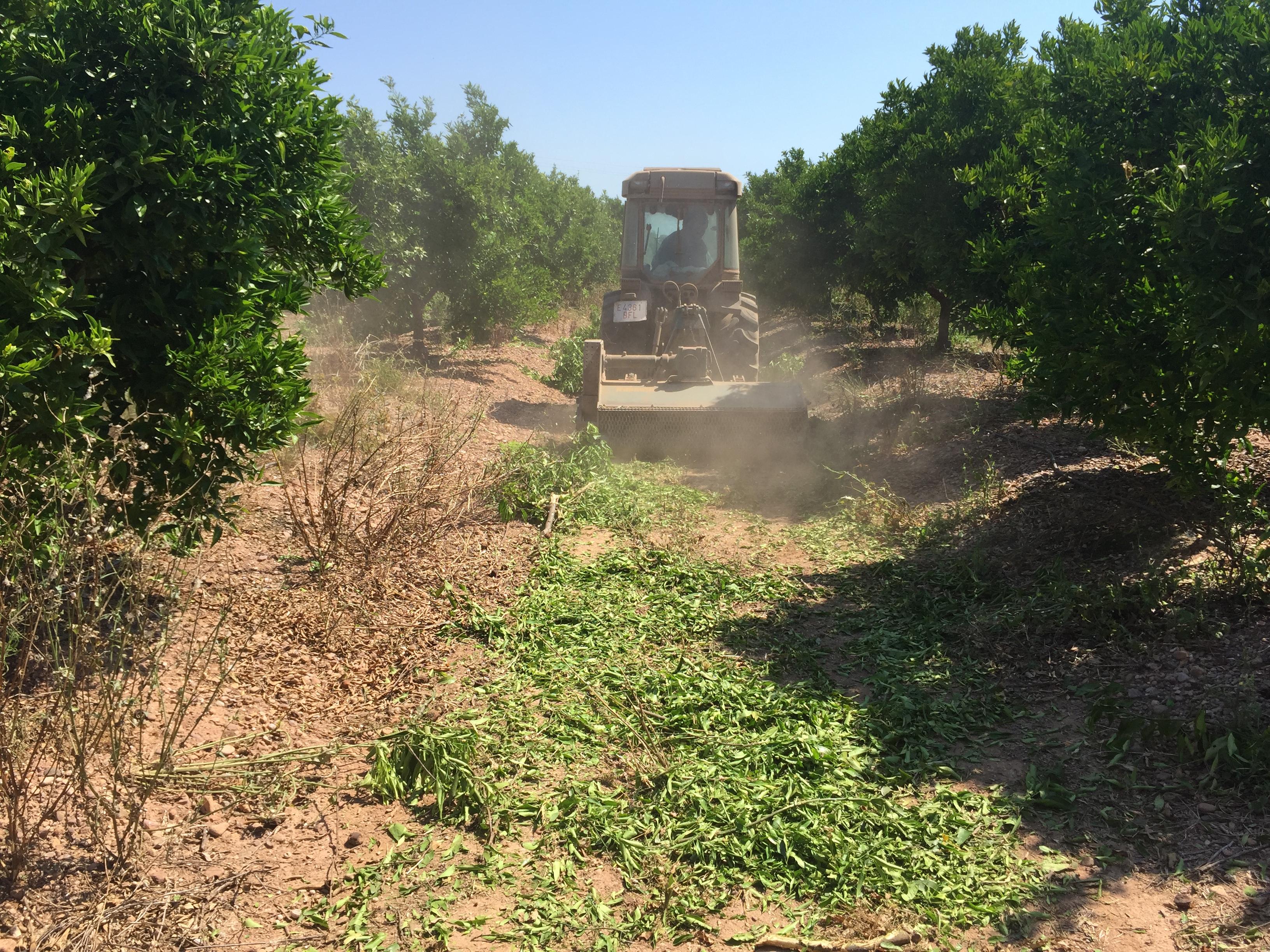 Trabajos agricolas trituradora