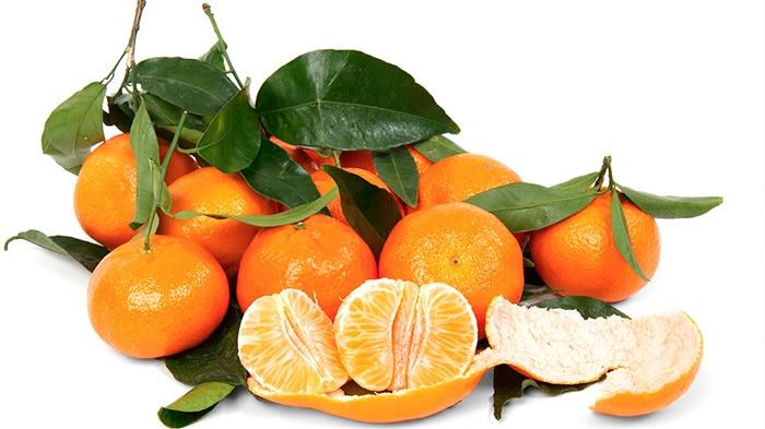 Clemenules, la reina de las mandarinas