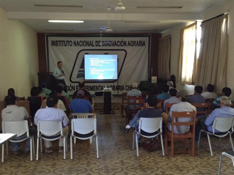 Servicios Agrícolas Meliá realiza unas charlas sobre cítricos en Perú
